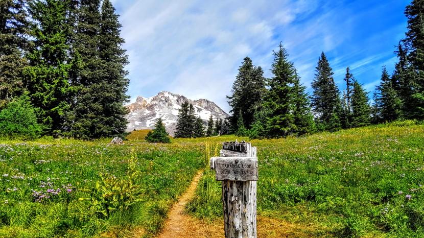 Mt. Hood, Oregon: Timberline / PCT  Trail & ParadiseFound
