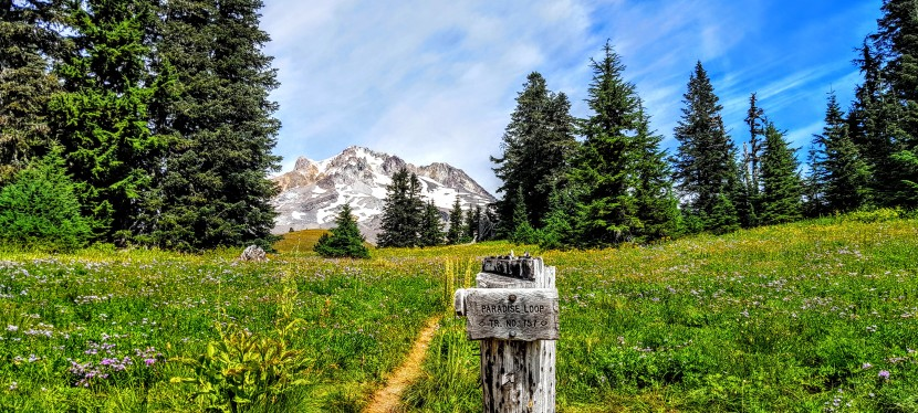 Mt. Hood, Oregon: Timberline / PCT  Trail & Paradise Found