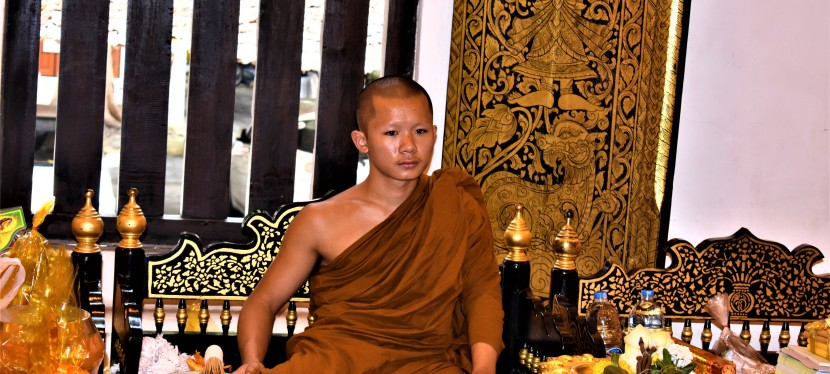 Photo Post 4: Monk in Chiang Mai Temple