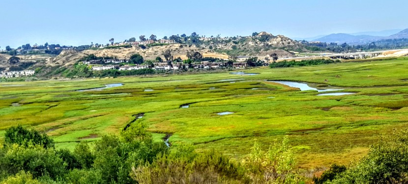 A little slice of something nice: Annie's Canyon, San Elijo Lagoon Ecological Reserve