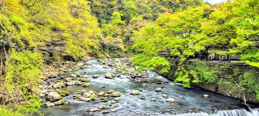 Top Pick:  Fukuzumiro Ryokan & Onsen, Traditional Culture &  Zen Views in Hakone