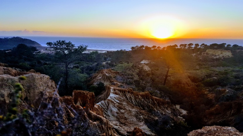 Discovering Torrey Pines State Park's Lovely Little Sista: Torrey Pines State Natural Reserve Extension