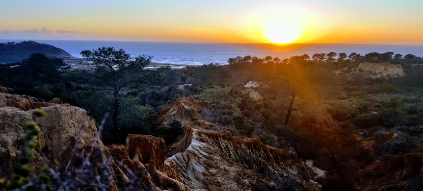 Discovering Torrey Pines State Park's Lovely Little Sista: Torrey Pines State Natural ReserveExtension