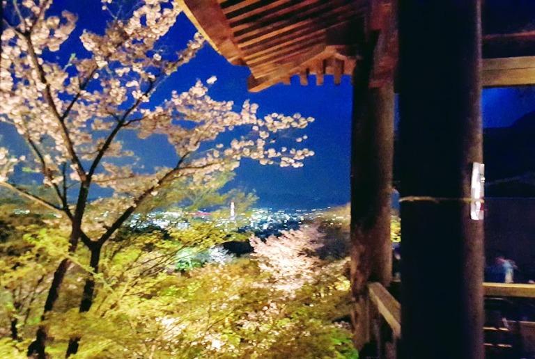 Dreamy Kyoto Vistas