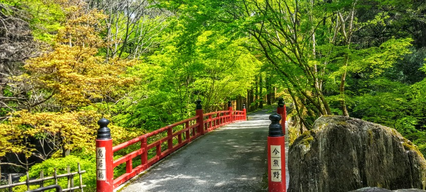 Photo Post: Hiking in the hills ofKyoto