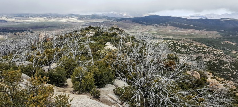 Stunning Stonewall Peak Hike, Cuyamaca Rancho State Park, SanDiego