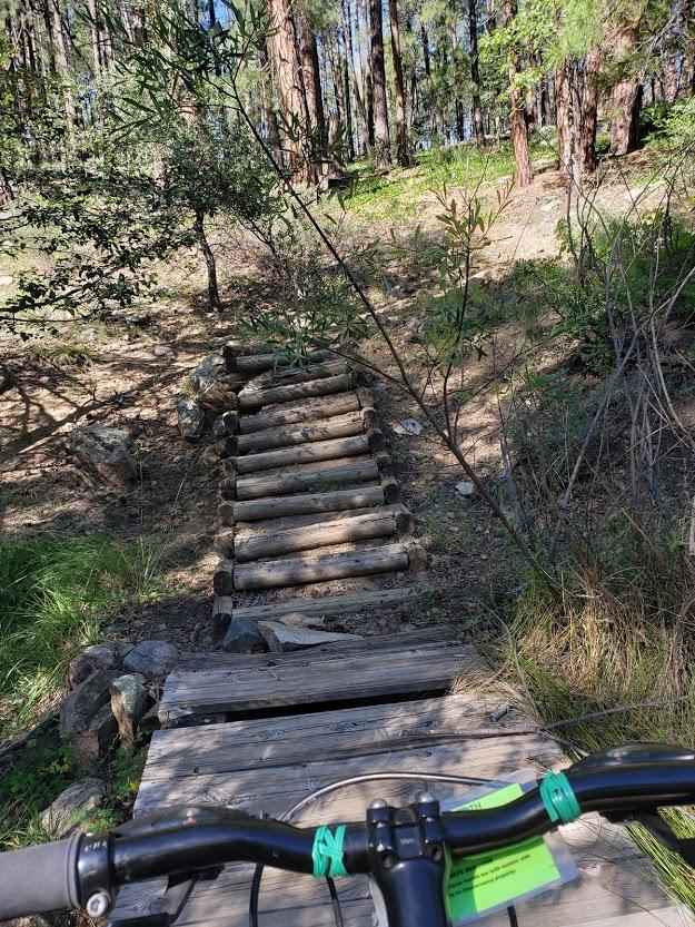 log bridge and bike goldwater