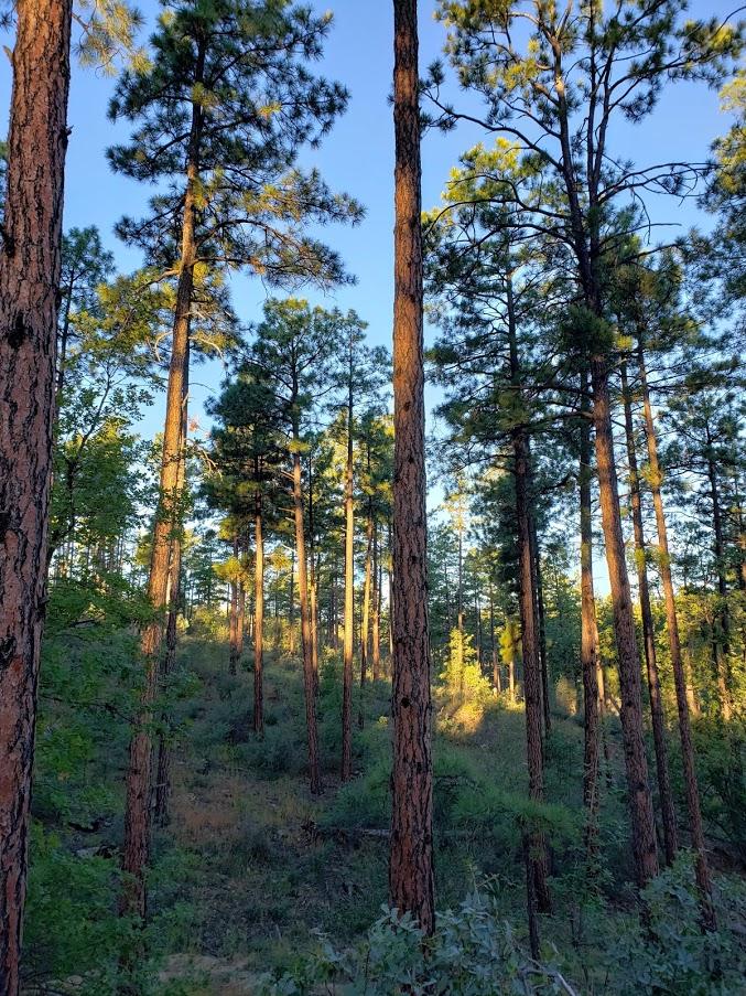 thumb hike scenery