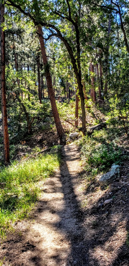 trail to spruce mountain