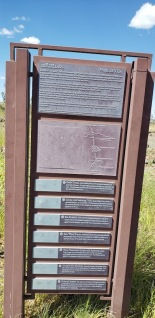 Petrogylph Guide