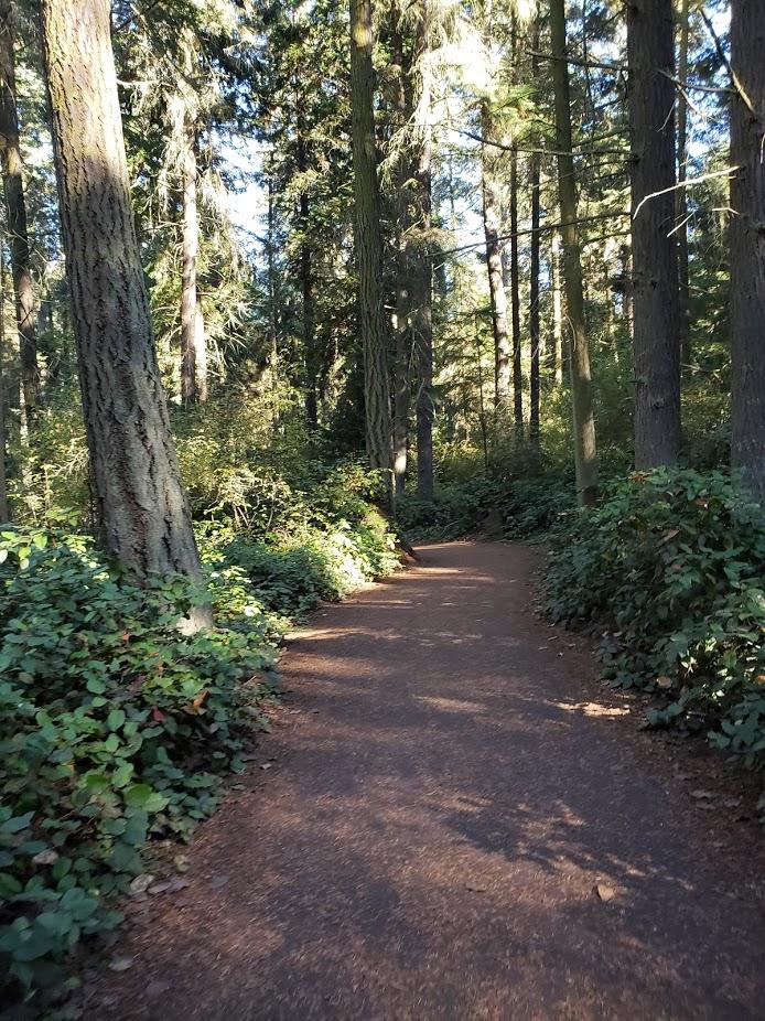 DS trail.jpg