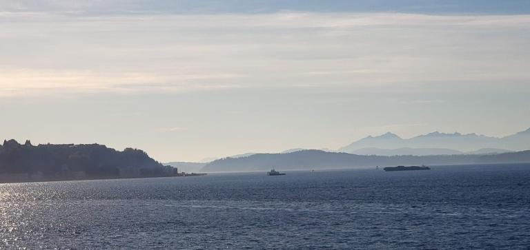Ferry Vistas.jpg