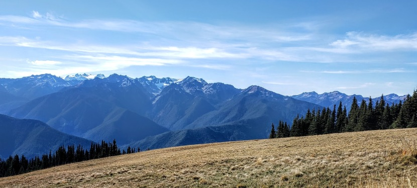 For views that rock you like a hurricane, visit Olympic National Park