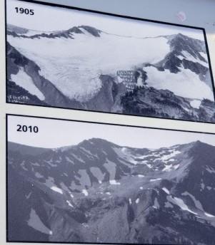 Lillian Glacier info