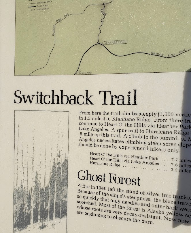 switchback trail scoop