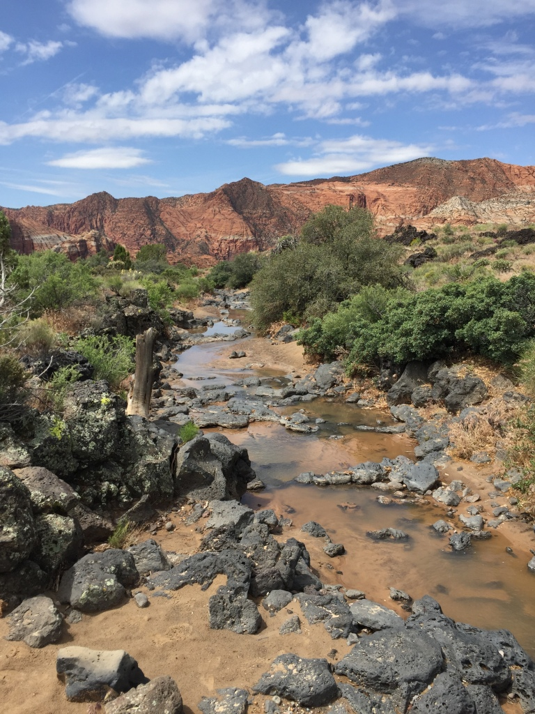 snow canyon stream