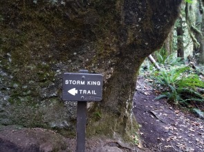 storm king trail sign