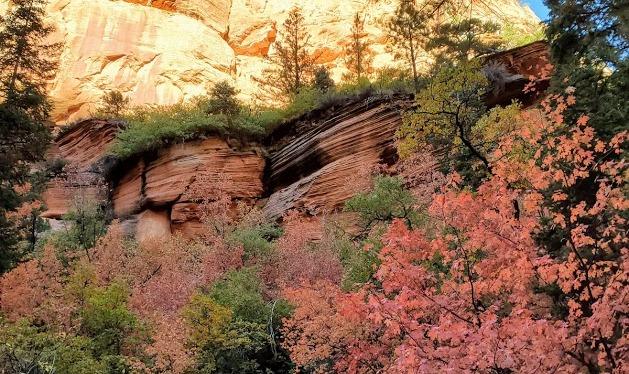 Spring Creek Canyon, A Perfect Little Fall Hike, Kanarraville,UT