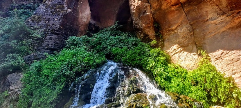 Zion Narrows, Widely Populated, and Dare I Say,Overhyped