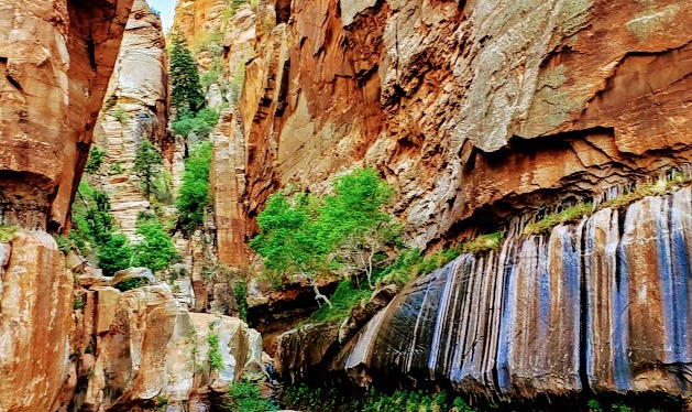 Exploring Enchanting Water Canyon—a Multifaceted Gem, Hildale,UT